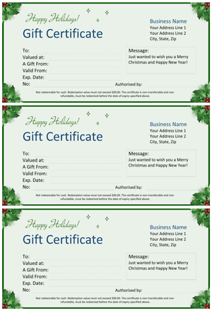 Christmas Gift Certificate Screenshot
