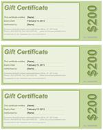 Gift Certificate Green Screenshot
